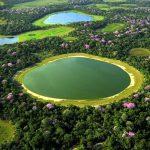 Aerial Pantanal