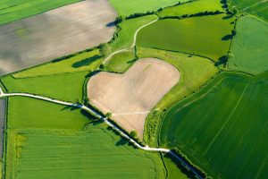 Agriculture Heart