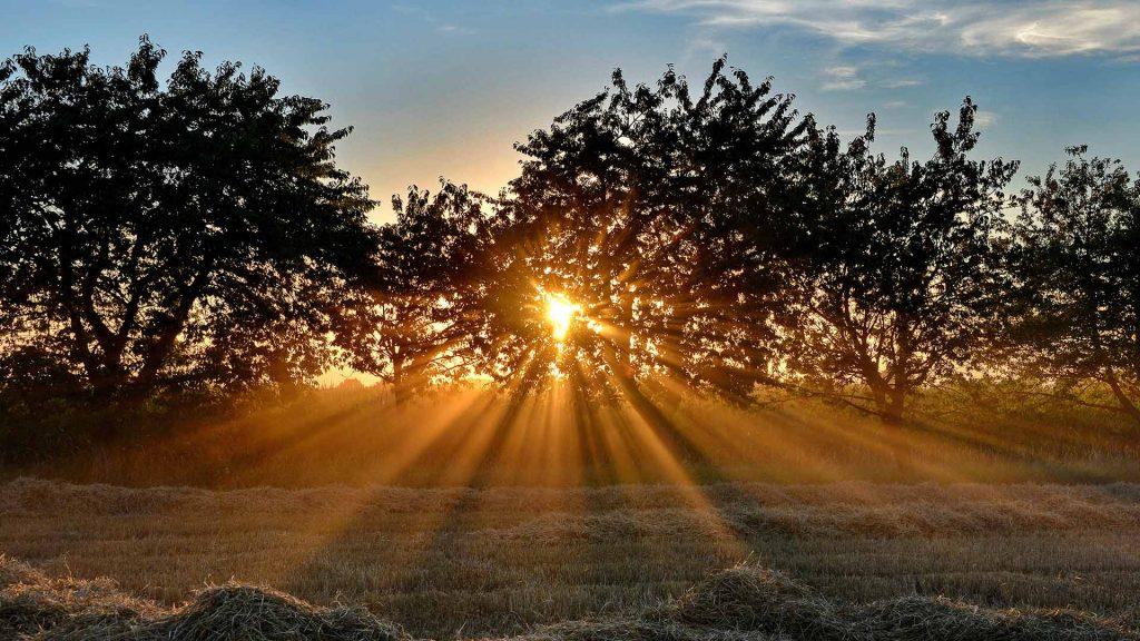 Hetzles Sonne