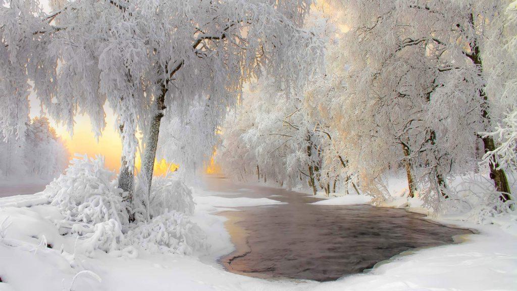 Kuhmo Lapland