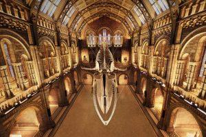 London History Museum