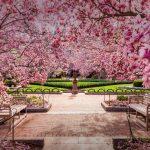 National Spring