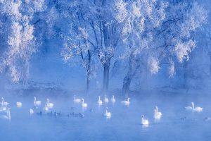 Wintersolstice1222