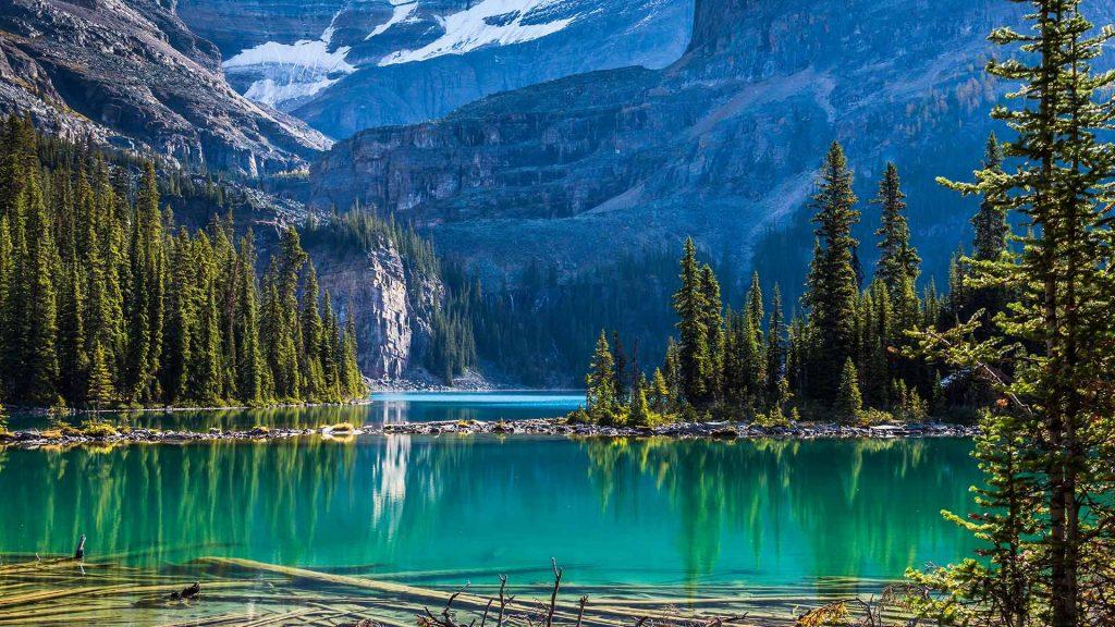 Yoho Lake