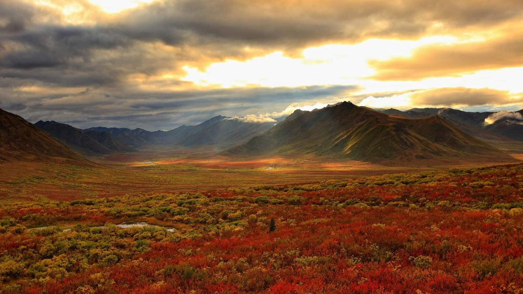 Yukon Colours
