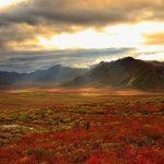 Yukon Colours