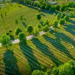 Arlington Drone