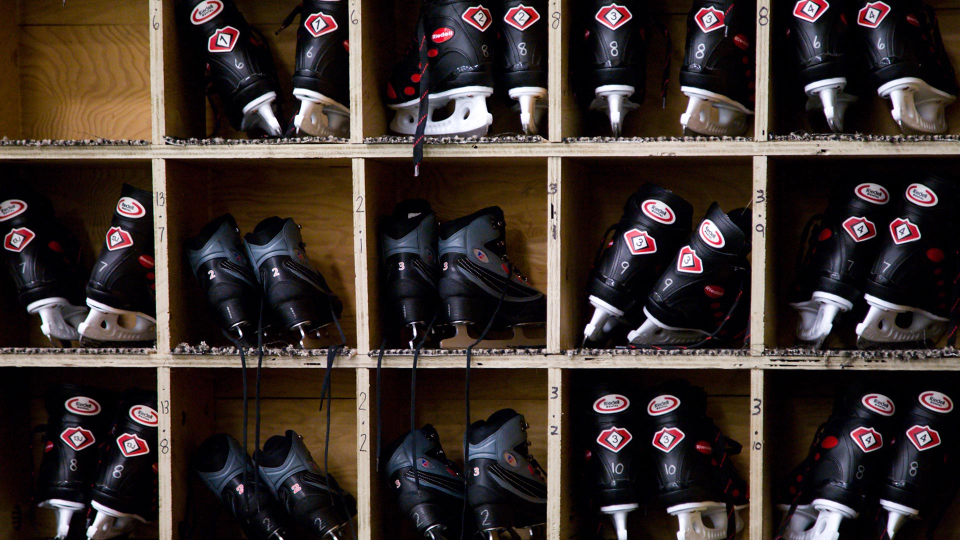 Black Skates
