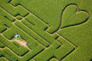 Herten Labyrinth