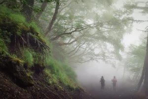 Mountain Day Japan