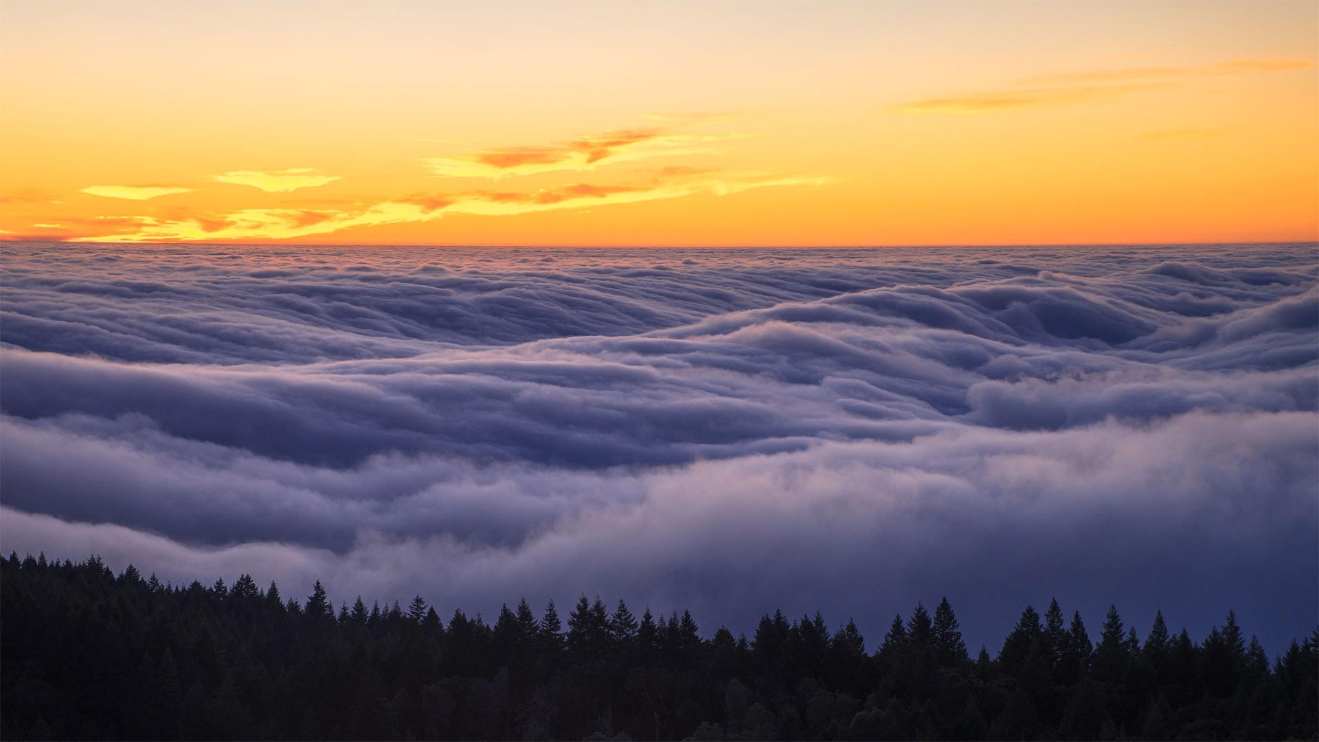 Fog over Mount Tamalpais