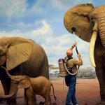 NHM Elephants