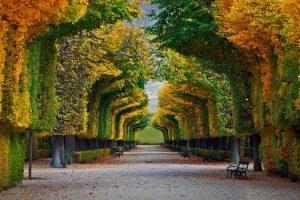 Schonnbrunn Park