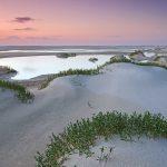 Fraser Sand