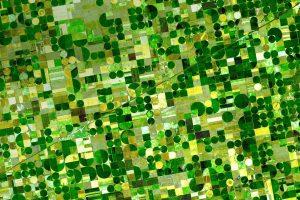 Kansas Crop Circles