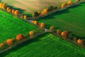Nottuln Herbst
