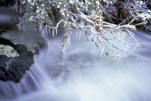 Thredbo Frost