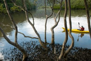 Canoe Creek