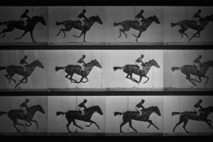 Muybridge Video
