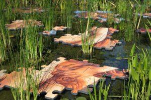Puzzle Pond