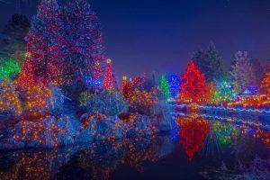 BC Van Dusen Lights
