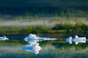 Bear Glacier Lake