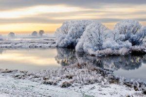 Elbe Frost