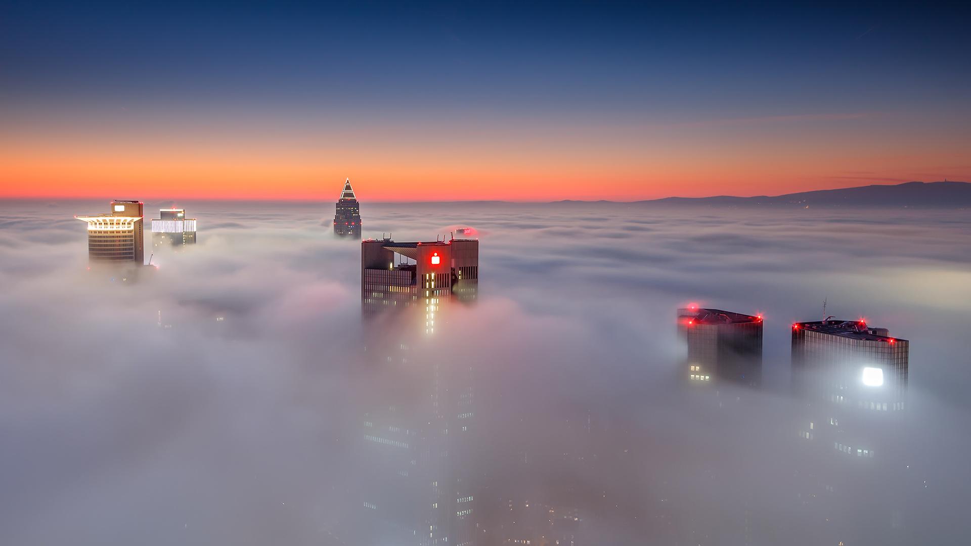 Nebel FFM