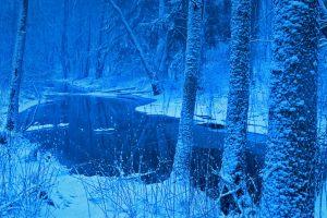 Poland Winter