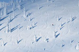 Whitefish Snow
