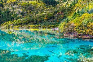 Azure Lake With Trees