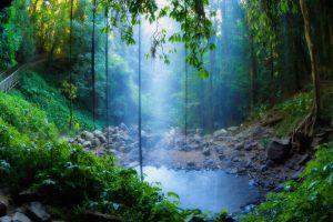Dorrigo Falls