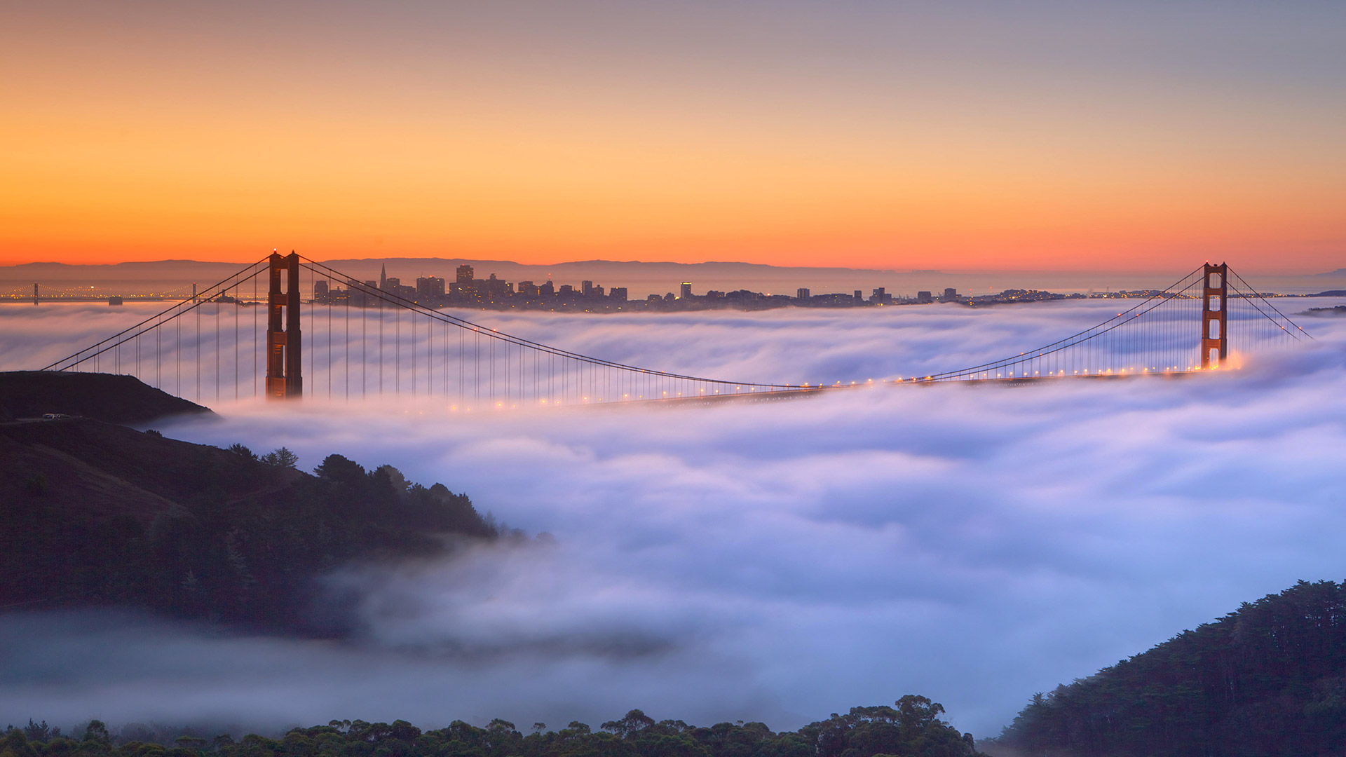 Golden Gate Fog Video