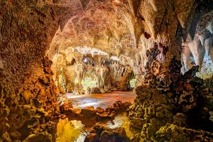 Painshill Park Grotto