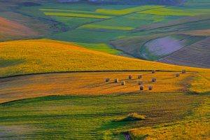 Perugia Farmland