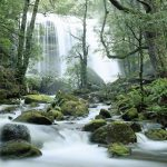 Tasmania Waterfall