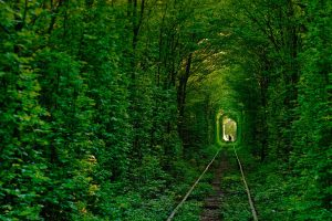 Tunnelof Love