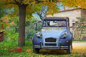 French Car Tree