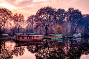 Jhelum Boats