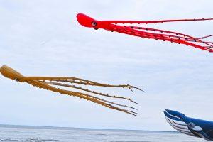 Kite Festival Chatelaillon