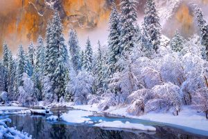Snow Yosemite