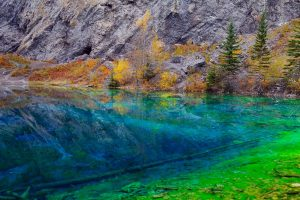 Algae Lake