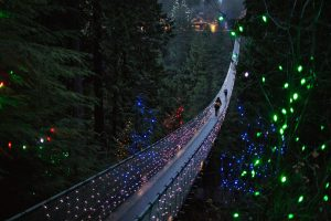 Capilano Xmas Lights