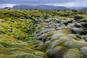 Eldraun Iceland