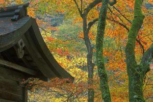 Kibune Shrine1