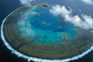 Lady Musgrave Atoll