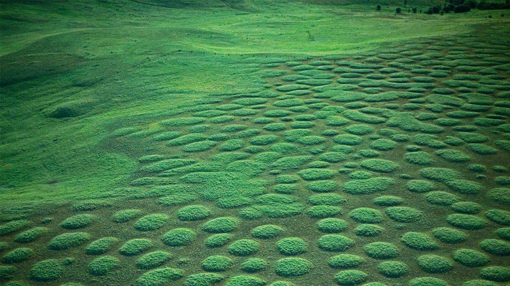 Zumwalt Prairie