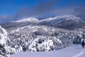 Mount Lovick Skier