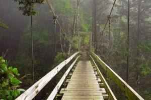 Tsocowis Creek Bridge