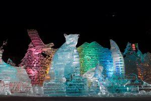 Ice Animals Sapporo